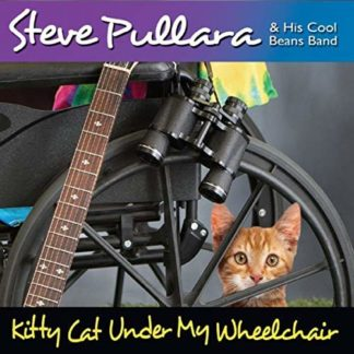 Kitty Cat Under My Wheelchair